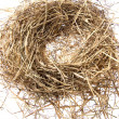 Stock Photo: Empty bird nest on white