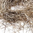 Empty bird nest on white - Stock Photo