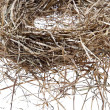 Empty bird nest on white — Stock Photo