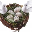 Easter doves — Stock Photo #7009381