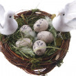 Easter doves — Stock Photo #7009475