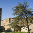 Massa marittima, toscany italy — Stock Photo