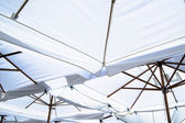Market umbrellas — Stock Photo