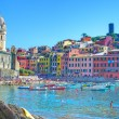 Vernazza typical Ligurian village — Stock Photo
