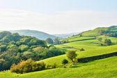 Hügellandschaft rund um einen bauernhof — Stockfoto