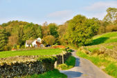 Country lane leading to a house — Stock Photo