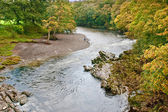 A bend in the River Lune — Stock Photo