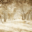 Royalty-Free Stock Photo: Snowy winter