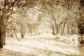 Inverno nevoso — Foto Stock
