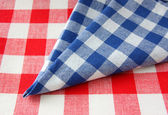 The checkered tablecloth — Stock Photo