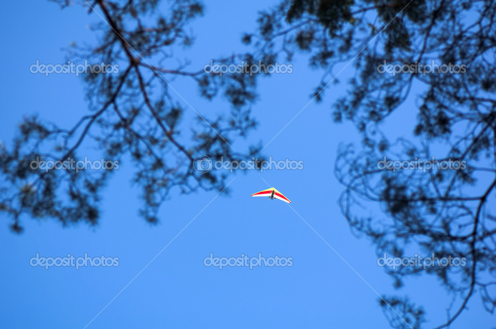 Powered gliders — Stock Photo #6827323