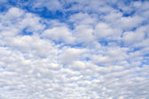 Cloudscape may be used as a background — Foto Stock