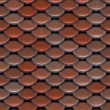 Red Roof Tiles — Stock Photo #6863132