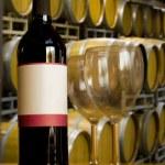 Winery Wine Tasting — Stock Photo