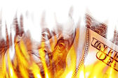 Money Ablaze in Flames — Stock Photo