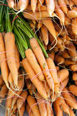 Freshly Picked Bunches of Organic Carrots — Stock Photo