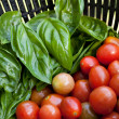 Stock Photo: Fresh Tomatoes and Basil