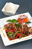 Thai Chile Basil Duck Dish with Rice — Stock Photo