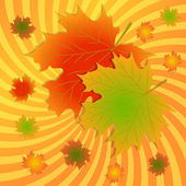 Autumn maple leaves background — Stock Vector
