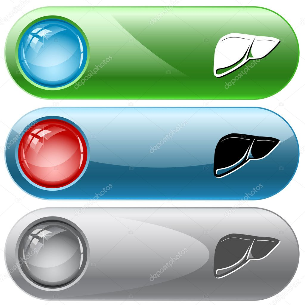 Liver. Vector internet buttons.  Stock Vector #6831812