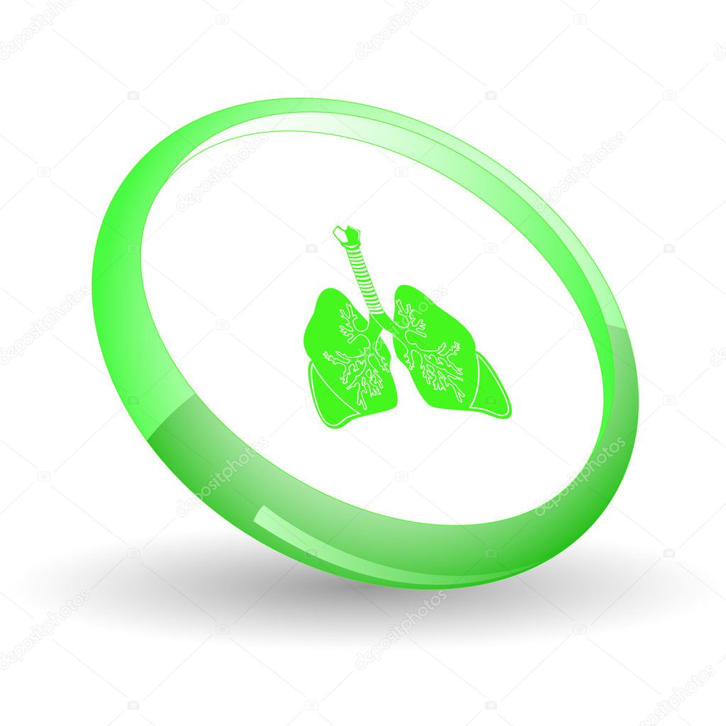 Lungs. Vector icon.  Stock Vector #6836626