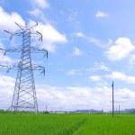 Paddy power tower — Stock Photo