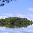 Stock Photo: Tranquil reservoir