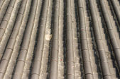 China Roof — Stock Photo