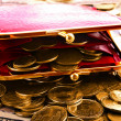 Red woman wallet and gold coins — Stock Photo #6779216