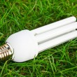 Stock Photo: Energy saving light bulb in green grass