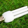 poupança de energia lâmpada na grama verde — Foto Stock