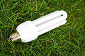 úsporná žárovka v zelené trávě — Stock fotografie