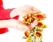 Hands and flowers isolated on white — Stock Photo