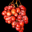 Grapes — Stock Photo #6780007