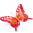 Stok fotoğraf: Butterfly isolated on white