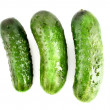 Cucumber isolated on white — Stock Photo