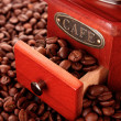 koffie grinder close-up — Stockfoto
