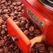 Coffee Grinder closeup - Stock Photo