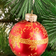 Red Christmas balls among green new year tree — Stock Photo #6786829