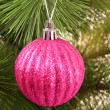 Christmas balls hanging with ribbons on fir tree - Stockfoto