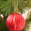 Christmas balls hanging with ribbons on fir tree — Stock Photo #6788027