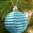 Christmas balls hanging with ribbons on fir tree — Stock Photo #6788028