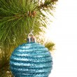 Christmas balls hanging with ribbons on fir tree - Zdjęcie stockowe