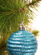 Christmas balls hanging with ribbons on fir tree — Stock Photo #6788037