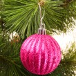 Christmas balls hanging with ribbons on fir tree — Stock Photo #6788155