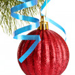 Christmas ball hanging with ribbons on fir tree — Stock Photo