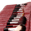 Cosmetic brushes in cosmetics bag on white — Stock Photo