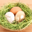 Brown,white and golden hen's egg in the grassy nest on the woode — Stok fotoğraf