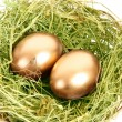 Two golden hen's eggs in the grassy nest isolated on white — Stock Photo