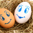 Royalty-Free Stock Photo: Couple of hen\'s eggs with faces in the grassy nest